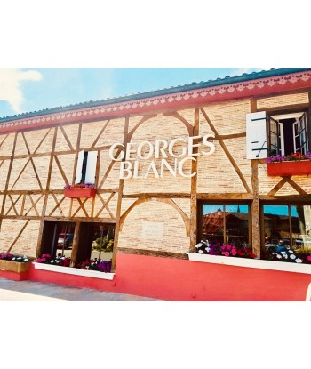 Gastronomic Flight to restaurant Georges Blanc from Lyon